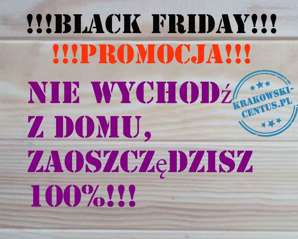Black Friday - promocja: nie wychodź z domu, zaosczędzisz 100%! [mem]