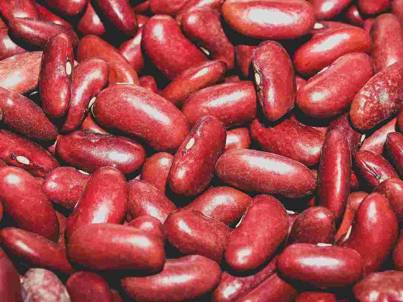 Zapasy żywności - ilustracja: czerwona fasola